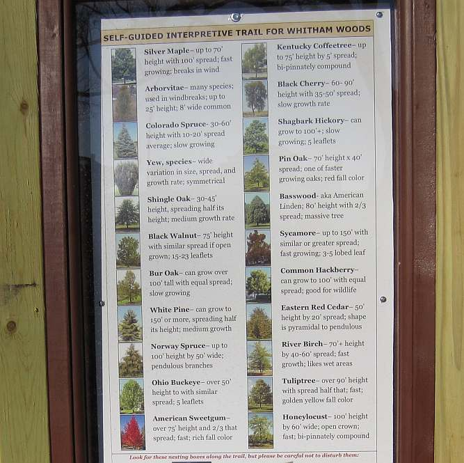The kiosk for the Self-Guided Interpretive Trail in Whitham Woods.