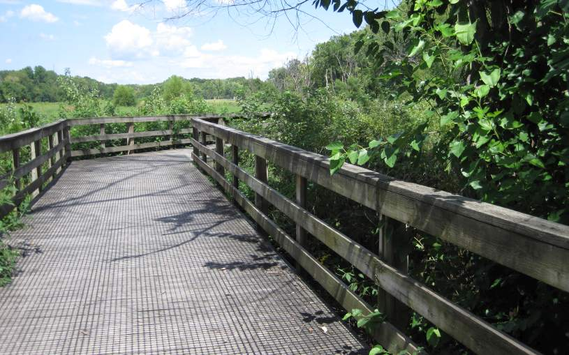 The Lamson Woods boardwalk.